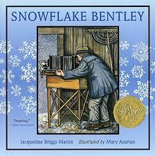snowflakebentley