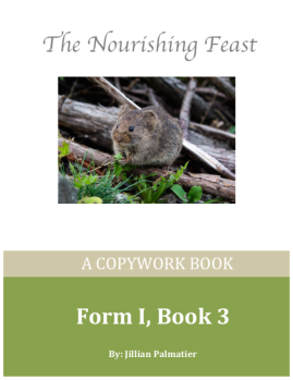 front cover form 1 book 3 copywork book
